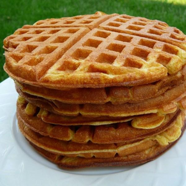 rich yogurt waffles photos