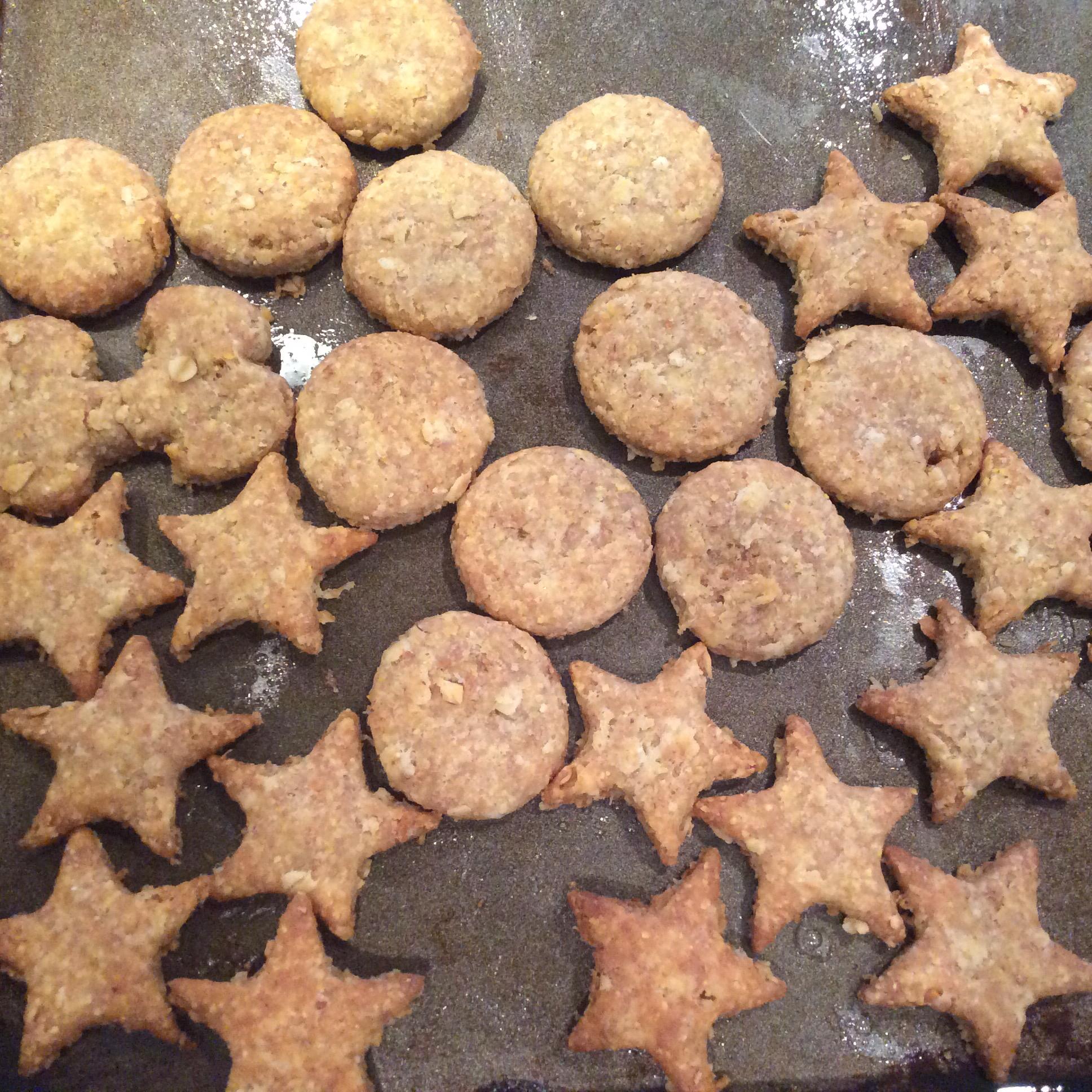 Doggie Biscuits I
