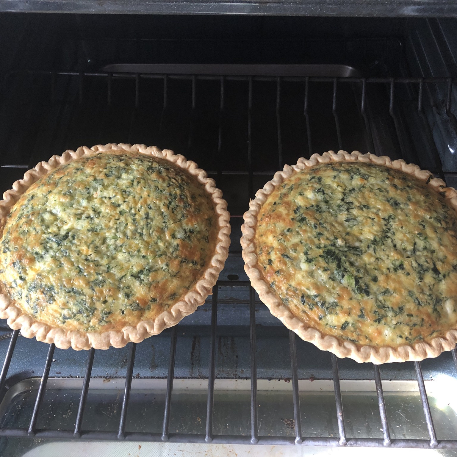 Green Chile Spinach Quiche Steven Kubik
