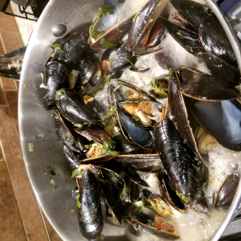Amazing Mussels