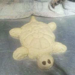 Turtle Bread
