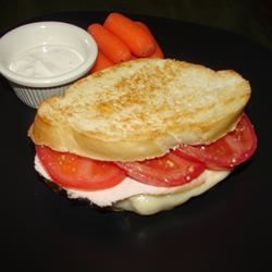 Tangy Turkey and Swiss Sandwiches GodivaGirl