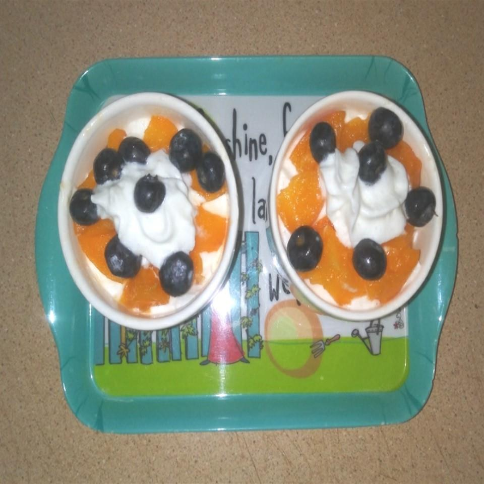 Blueberry and Apricot Dessert