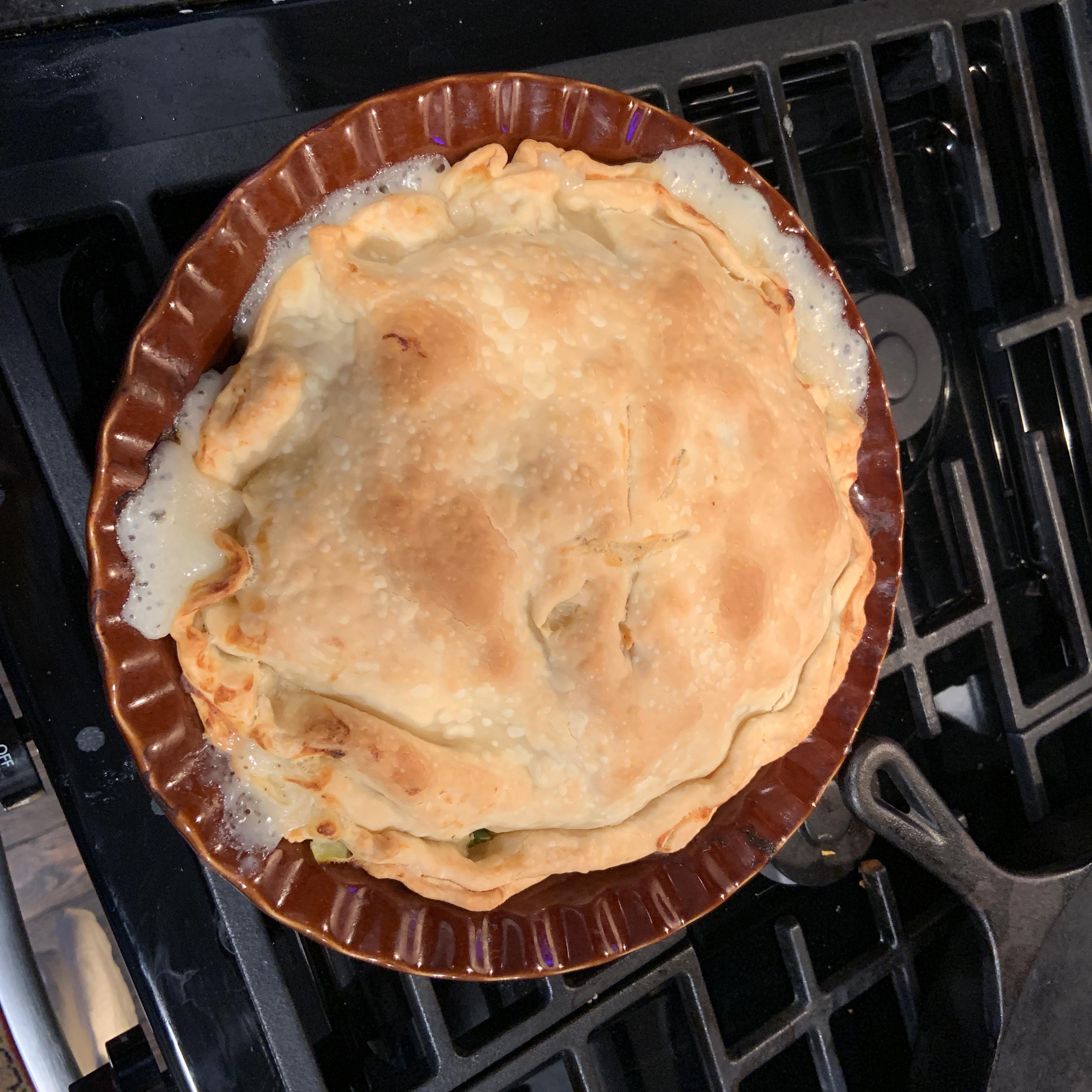 Chicken Pot Pie IX amateurchefatl