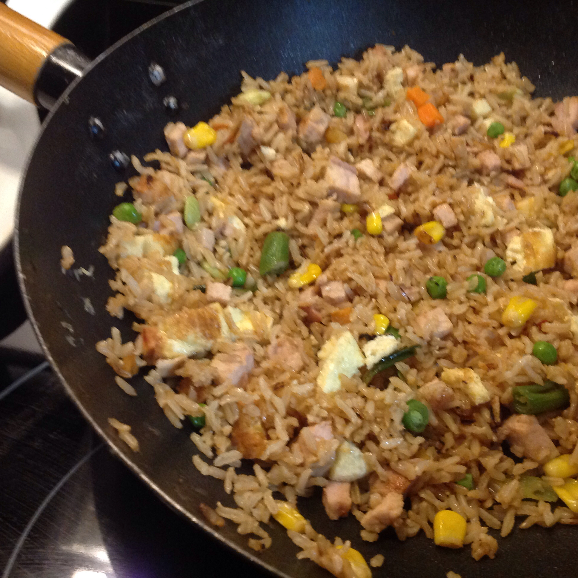 Chinese Chicken Fried Rice II Doglover