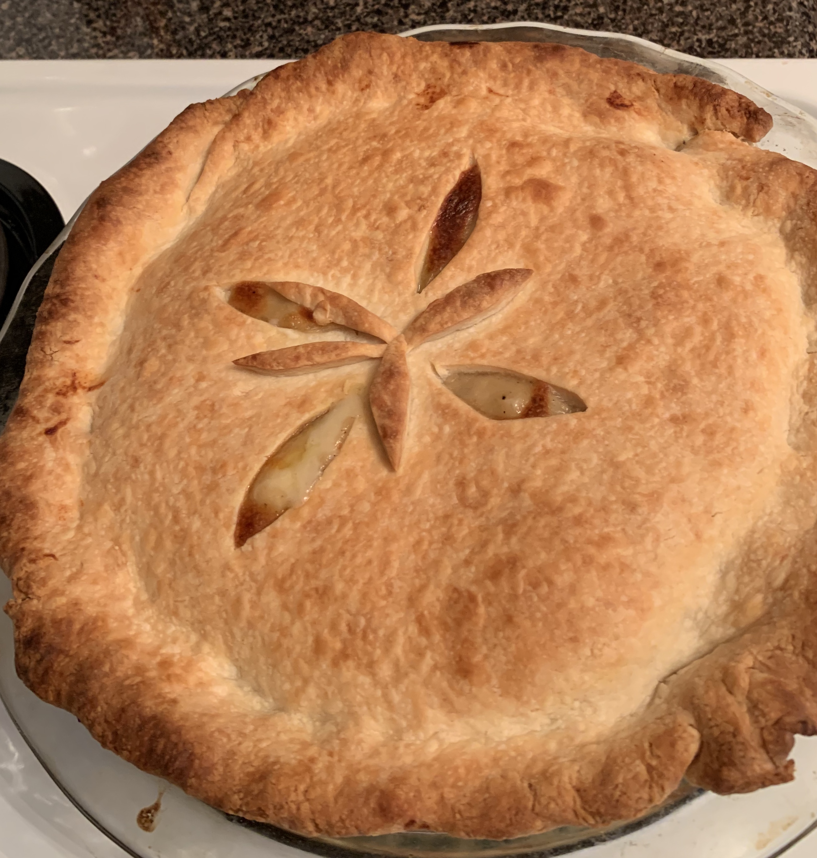 Chicken Pot Pie IX Christy16