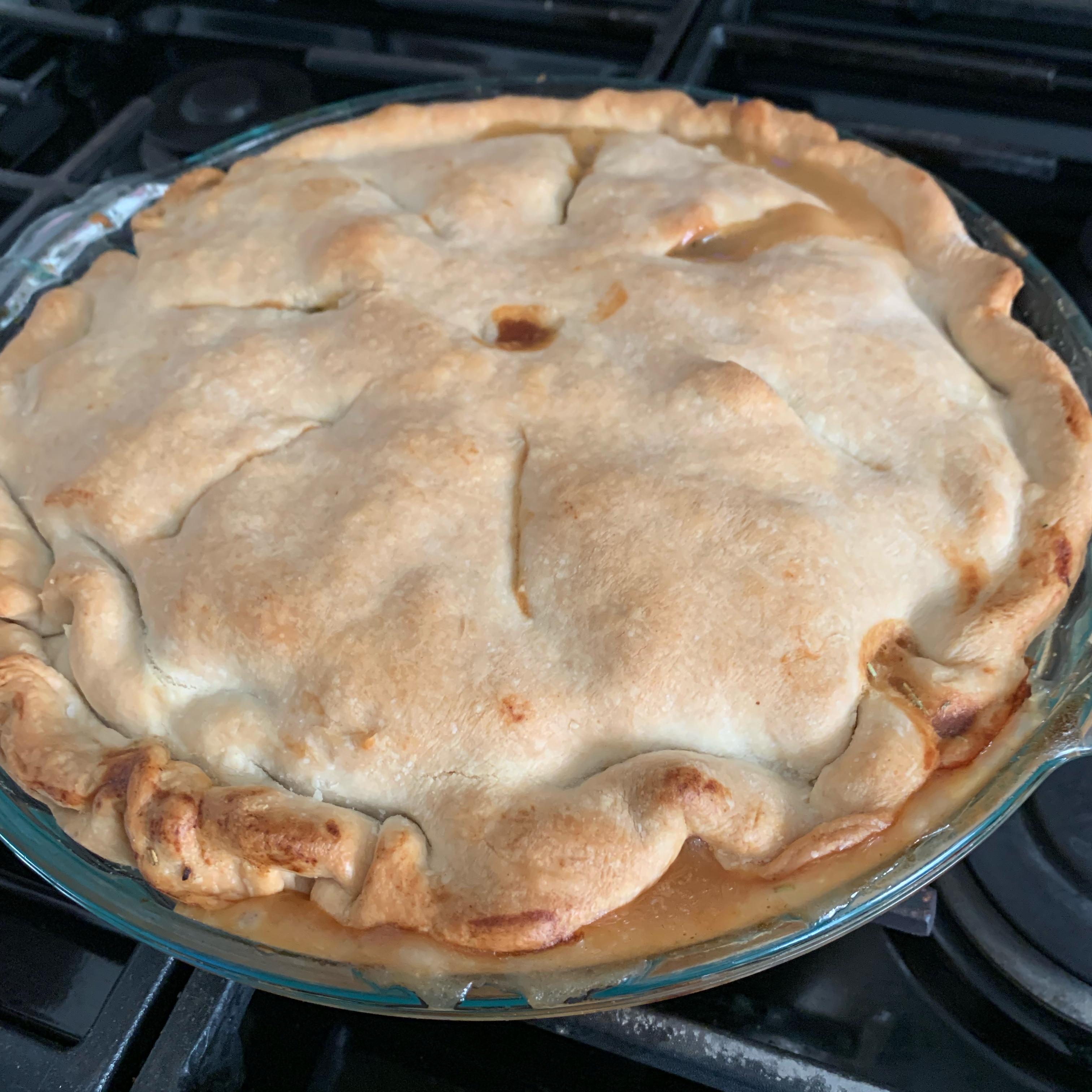 Chicken Pot Pie IX Lizzy