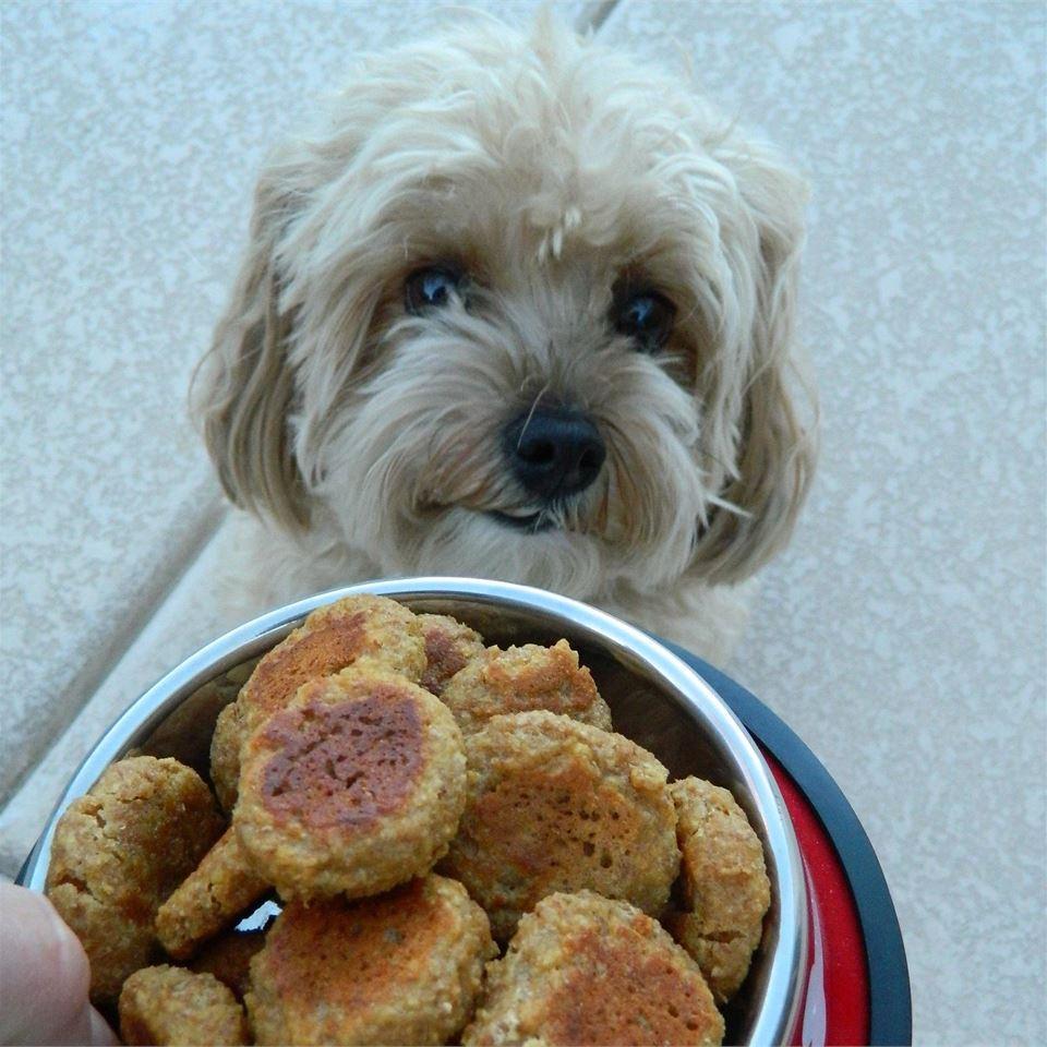 Liver Lickers Dog Treats